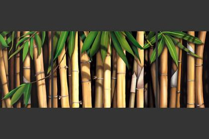 Photo of: Beyond Bamboo