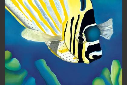 Photo of: Madame Butterflyfish