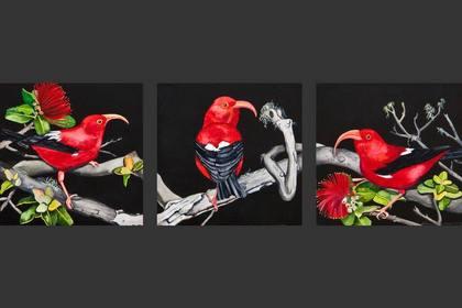 Photo of: Three Little Birds